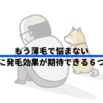 ハゲおじさんと犬